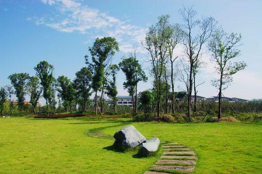 虎溪植物园