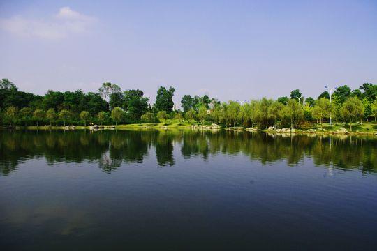 重大虎溪松林公园